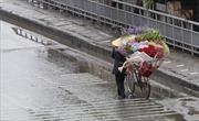 Thời tiết ngày 10/1: Bắc Bộ tiếp tục có mưa rét, nhiệt độ Hà Nội giảm xuống thấp nhất 13 độ C