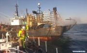 Một thuyền viên Việt Nam thiệt mạng ở Hàn Quốc