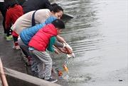 Người dân thả cá chép, tiễn ông Công ông Táo về trời