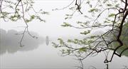 Đông Bắc Bộ có mưa rào và có nơi có dông, đề phòng lốc, sét và gió giật mạnh