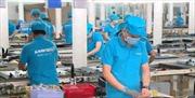 Phạt, truy thu thuế hơn 68 tỉ đồng với Công ty Asanzo