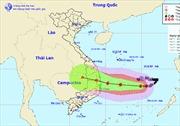 Thời tiết ngày 9/11: Bão số 6 kết hợp với không khí lạnh gây sóng lớn tại Biển Đông