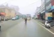 Xe máy đối đầu xe tải do sương mù chắn tầm nhìn
