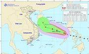 Thời tiết ngày 26/12: Tin về cơn bão số 8, Bắc Bộ và Trung Bộ trời rét, vùng núi rét đậm, rét hại
