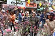 Từ 9/1, Hà Nội cấm đường một loạt tuyến phố cổ để tổ chức Chợ hoa Xuân 2020