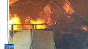 Cháy xưởng chế biến gỗ tại Bình Dương