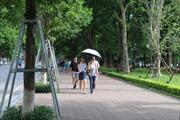 Thời tiết ngày 27/9: Bắc Bộ nắng hanh mát mẻ, Nam Bộ chiều tối có mưa dông