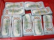Mang hơn 77.000 USD nhập cảnh mà không khai báo hải quan
