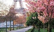 Vietravel giảm tới 6 triệu cho tour du lịch Pháp