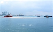 Bộ TNMT cho phép Thép Hòa Phát Dung Quất nhận chìm vật chất nạo vét cảng