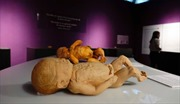 Tạm ngưng Triển lãm 'Sự bí ẩn đặc biệt của cơ thể người'