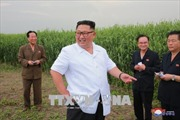 Nhà lãnh đạo Triều Tiên thị sát hàng loạt cơ sở kinh tế