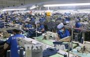 EVFTA và EVIPA khẳng định vị thế của Việt Nam trong nền kinh tế thế giới