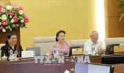 Phê chuẩn đề nghị bổ nhiệm 16 Đại sứ đặc mệnh toàn quyền Việt Nam