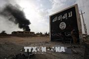Khủng bố IS tái xuất ở Iraq với chiến thuật mới