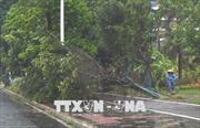 Điện thăm hỏi mưa bão gây lũ lụt tại Trung Quốc