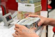 Sáng đầu tuần, tỷ giá trung tâm giảm, giá đồng USD tăng