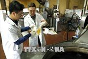 Hà Nội xử phạt vi phạm an toàn vệ sinh thực phẩm gần 1,5 tỷ đồng