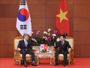 Việt Nam - Hàn Quốc xây dựng kế hoạch thực hiện kiểm toán chung