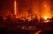 Italy sơ tán hàng trăm người do cháy rừng