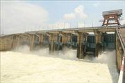 Đóng đập xả lũ Thủy điện Trị An nhằm hạn chế ngập úng vùng hạ du