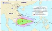 Đêm 24/11, bão số 9 giật cấp 12 có thể đổ bộ khu vực Phú Yên - Bình Thuận