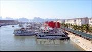 Thí điểm ghép tàu tham quan vịnh Hạ Long