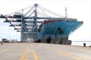 Vinalines: Khối vận tải biển giảm lỗ đến 70%