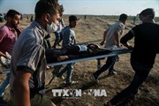 Mỹ và Qatar hội đàm, thúc đẩy một thỏa thuận hòa bình giữa Israel - Palestine