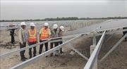Bà Rịa-Vũng Tàu sẽ đầu tư 1.500 tỷ đồng xây hai dự án điện mặt trời