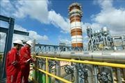 PV Power thu xếp 1,4 tỷ USD vốn cho Dự án Nhiệt điện khí Nhơn Trạch 3&4