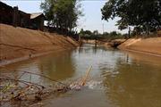 Hạn hán khiến 43 hồ chứa ở Bình Phước giảm mực nước