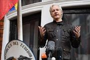 Tổng thống Ecuador bảo vệ quyết định rút quy chế tị nạn với nhà sáng lập WikiLeaks