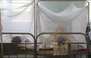 Dịch sốt xuất huyết diễn biến phức tạp tại Bình Định