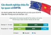 Doanh nghiệp châu Âu lạc quan về EVFTA