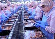 Hiệp định Thương mại tự do Việt Nam - EU - Bài 4: Cơ hội bứt phá cho ngành thủy sản