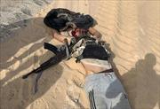 IS thừa nhận tiến hành vụ tấn công khiến 8 cảnh sát Ai Cập thiệt mạng