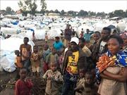 1,4 triệu người tị nạn cần tái định cư khẩn cấp trong năm 2020