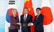 Các ngoại trưởng Trung - Nhật - Hàn nhất trí tăng cường hợp tác ba bên