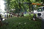 Hà Nội chủ động phòng ngừa các sự cố về môi trường do ảnh hưởng bão số 3