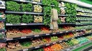 Các siêu thị lớn ở Anh 'đoạn tuyệt nhựa'