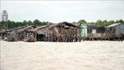 Cà Mau ban bố tình huống khẩn cấp sạt lở ở bờ biển Đông