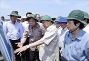 Thủ tướng: Cần khoảng 3.000 tỷ đồng để xử lý sạt lở ở Đồng bằng sông Cửu Long