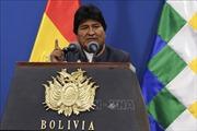 Tổng thống Bolivia kêu gọi phe đối lập 'khẩn cấp' đối thoại hòa bình
