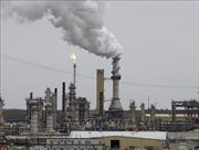 Giá dầu thế giới tăng hơn 2%