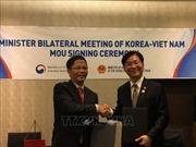 Việt Nam - Hàn Quốc nhất trí thúc đẩy quan hệ hợp tác kinh tế, thương mại và đầu tư