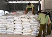 Gần 13.000 kg đường cát nhập lậu giấu trong vườn cao su