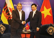 Bộ trưởng Ngoại giao Phạm Bình Minh tiếp Bộ trưởng thứ hai Bộ Ngoại giao Brunei