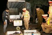 Xe tải chở hàng trăm kg nội tạng động vật bốc mùi