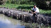 Đề nghị hỗ trợ kinh phí phòng chống hạn, thiếu nước và xâm nhập mặn